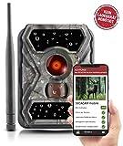 SECACAM Raptor Mobile - 3G Wildkamera mit...